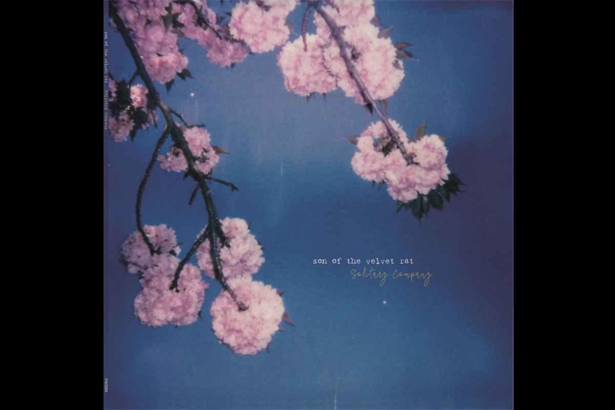 Son Of The Velvet Rat Release 'Beautiful Disarray' Video
