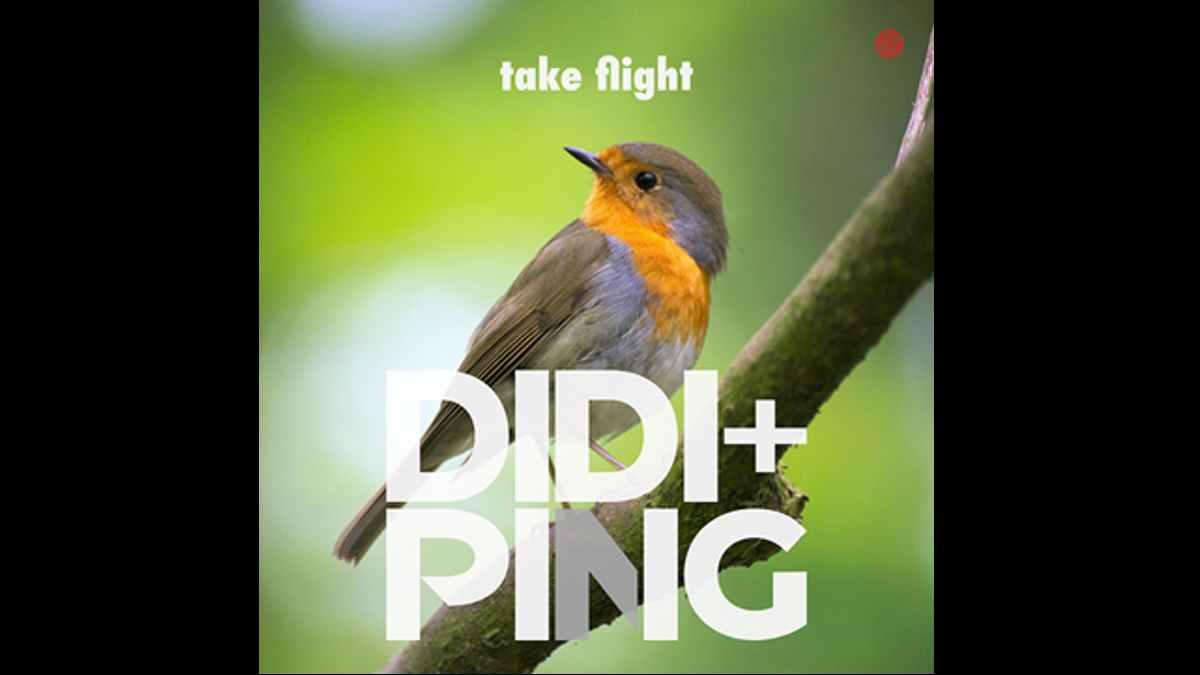 Didi Ping single art